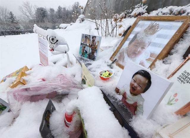 Những cái chết thương tâm của trẻ em Hàn Quốc - Ảnh 2.
