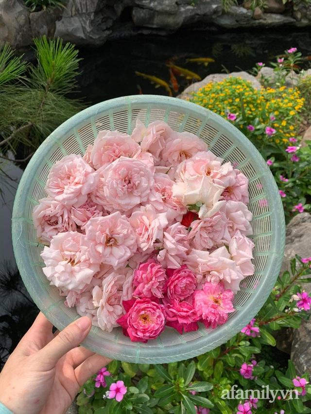 Ngôi nhà quanh năm rực rỡ sắc hương hoa hồng và đủ loại cây ăn quả ở Hà Nội - Ảnh 12.