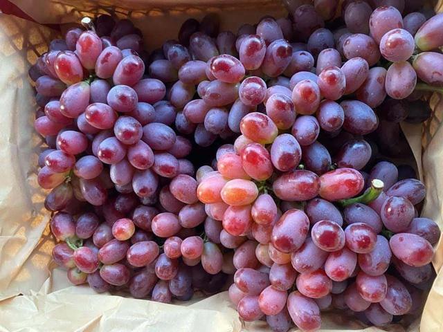 Mẹo bảo quản trái cây mâm ngũ quả tươi lâu gấp đôi mà không cần đến tủ lạnh - Ảnh 4.