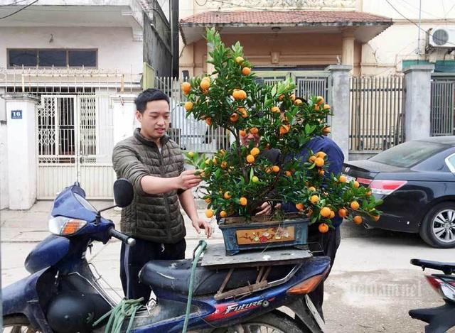 مردم هاثان تعاونی ها را برای بازی تت ریختند ، باغبان ها میلیاردها پول جمع کردند - عکس 10.