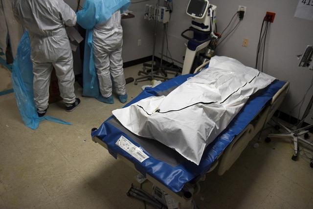 ایالات متحده در حال افزایش تعداد مرگ و میر ناشی از Covid-19 است - عکس 2.