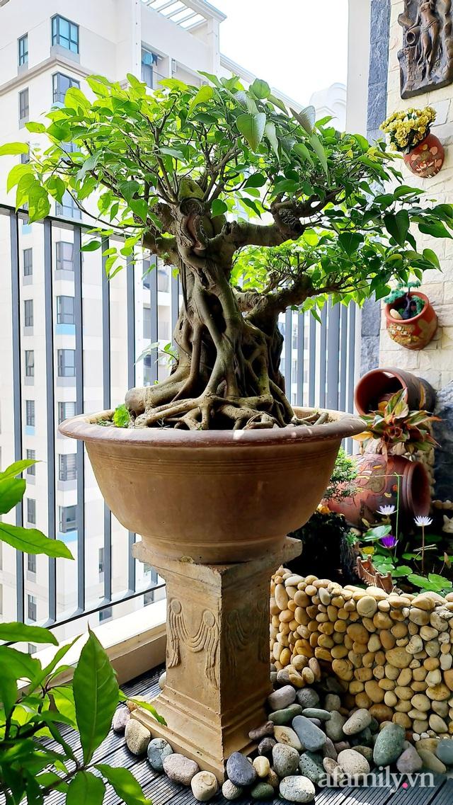 Khu vườn nhỏ thư giãn, tĩnh lặng trên ban công với view hồ lãng mạn của gia đình giám đốc trẻ ở Hà Nội - Ảnh 6.