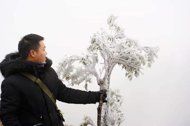 منطقه مرزی Bình Liêu زیبا و مسحور برف و یخ است - عکس 3.