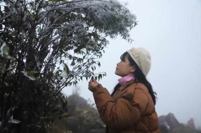 منطقه مرزی Bình Liêu زیبا و مسحور شده در یخ و برف است - عکس 4.