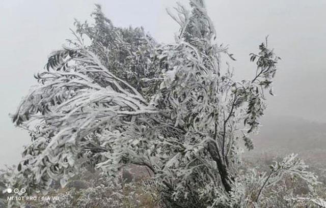 منطقه مرزی Binh Lieu زیبا و مسحور برف و یخ است - عکس 9.