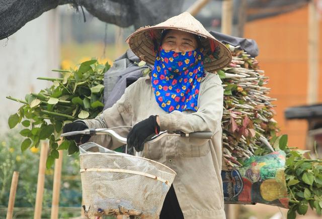 Ruộng hoa khô héo vì không bán được, dân trồng hoa gạt nước mắt cắt bỏ - Ảnh 16.