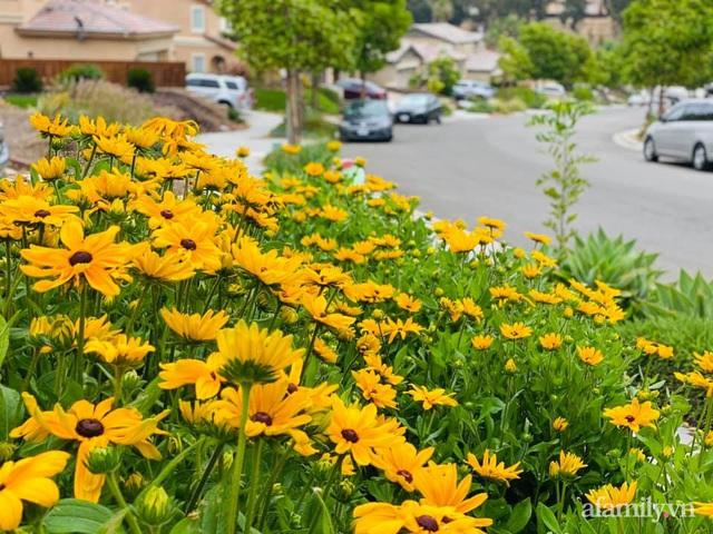 Khu vườn muôn hoa khoe sắc tỏa hương của mẹ Việt thức đêm chăm cây  - Ảnh 27.