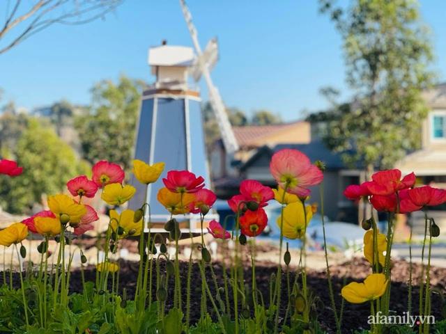 Khu vườn muôn hoa khoe sắc tỏa hương của mẹ Việt thức đêm chăm cây  - Ảnh 29.
