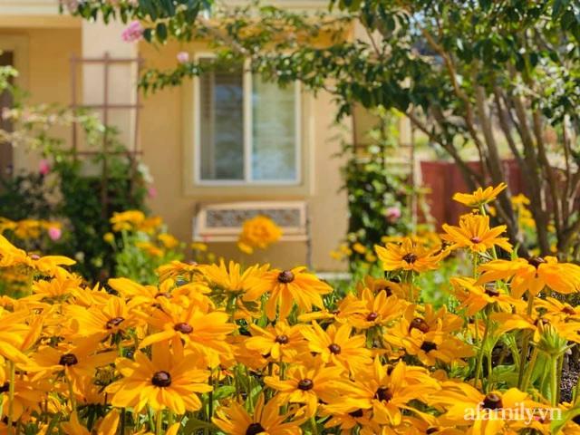 Khu vườn muôn hoa khoe sắc tỏa hương của mẹ Việt thức đêm chăm cây  - Ảnh 33.