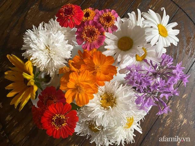 Khu vườn muôn hoa khoe sắc tỏa hương của mẹ Việt thức đêm chăm cây  - Ảnh 35.