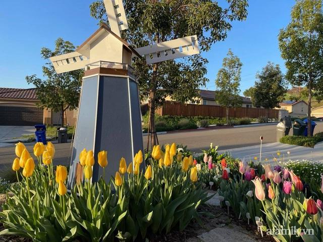 Khu vườn muôn hoa khoe sắc tỏa hương của mẹ Việt thức đêm chăm cây  - Ảnh 7.