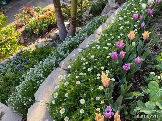 Khu vườn muôn hoa khoe sắc tỏa hương của mẹ Việt thức đêm chăm cây  - Ảnh 8.