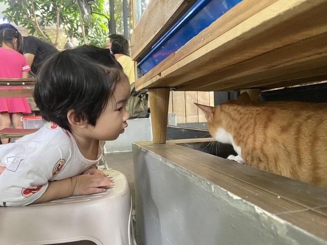 Trẻ em Sài Gòn háo hức đến quán cà phê độc nhất vô nhị chơi đùa với thú cưng tiền tỷ - Ảnh 12.