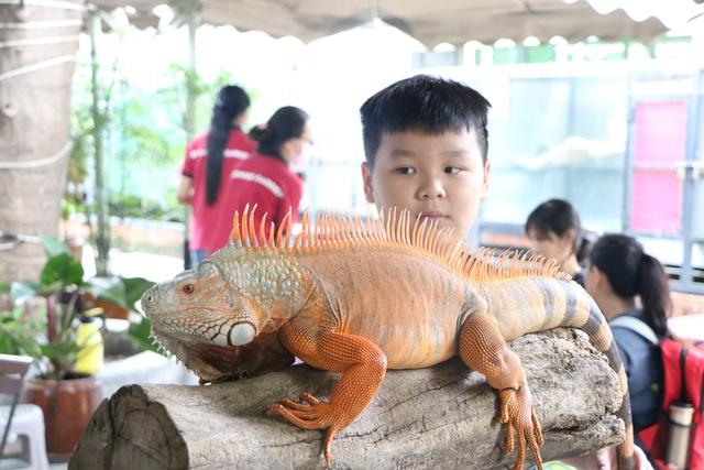 Trẻ em Sài Gòn háo hức đến quán cà phê độc nhất vô nhị chơi đùa với thú cưng tiền tỷ - Ảnh 4.