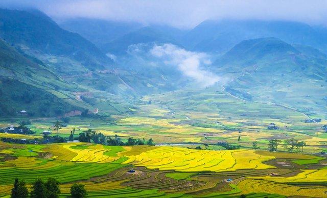 Tứ đại đỉnh đèo của Việt Nam gồm những đèo nào? Rất nhiều người trả lời sai câu hỏi này   - Ảnh 5.