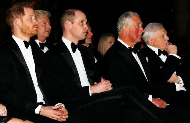 Đây chính là lý do khiến Hoàng tử William mở lời nói chuyện với em trai sau scandal tố tội của Meghan Markle - Ảnh 2.