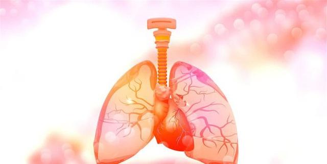 """Mũi là """"đèn tín hiệu"""" của phổi, ở mũi xuất hiện 3 dấu hiệu này cảnh báo bệnh phổi - Ảnh 1."""