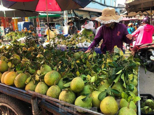 Trái cây đầu mùa giá rẻ chưa từng thấy - Ảnh 7.