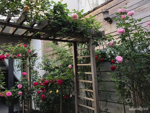 Vườn hồng rực rỡ tỏa sắc hương trước sân nhà đón hè sang của cặp vợ chồng trẻ Sài Gòn - Ảnh 2.