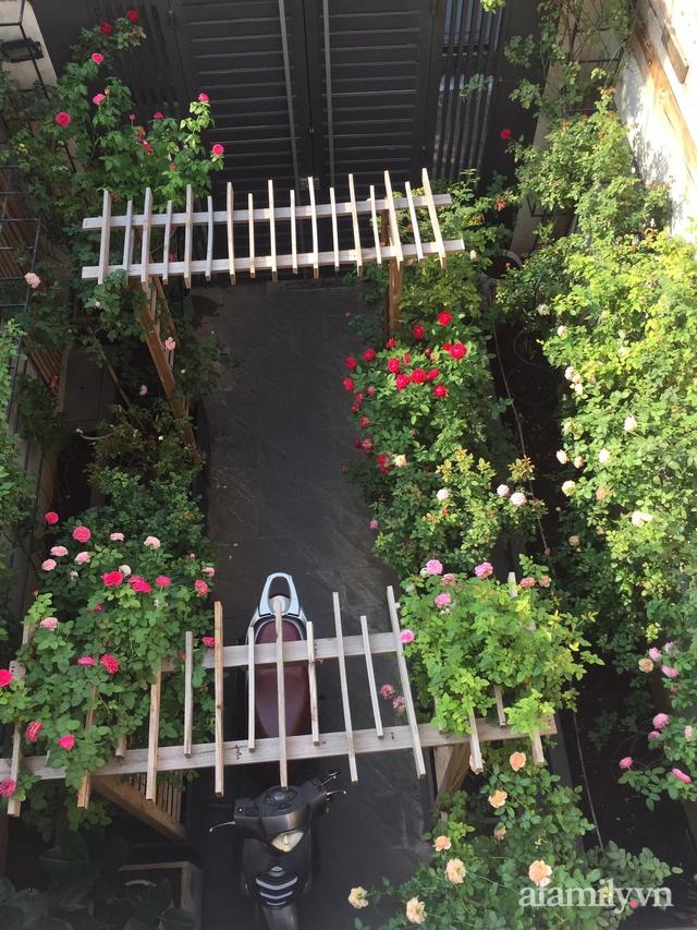 Vườn hồng rực rỡ tỏa sắc hương trước sân nhà đón hè sang của cặp vợ chồng trẻ Sài Gòn - Ảnh 12.
