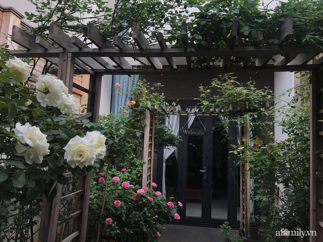 Vườn hồng rực rỡ tỏa sắc hương trước sân nhà đón hè sang của cặp vợ chồng trẻ Sài Gòn - Ảnh 18.