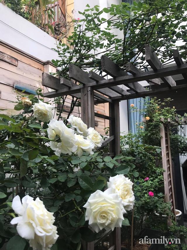 Vườn hồng rực rỡ tỏa sắc hương trước sân nhà đón hè sang của cặp vợ chồng trẻ Sài Gòn - Ảnh 27.