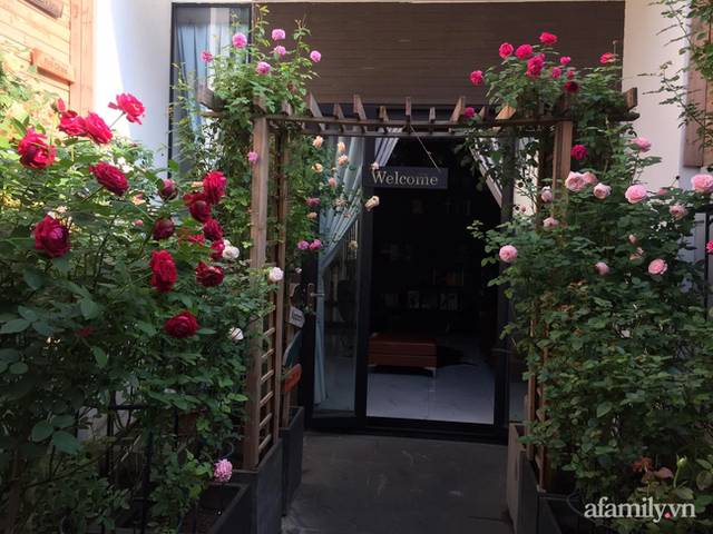 Vườn hồng rực rỡ tỏa sắc hương trước sân nhà đón hè sang của cặp vợ chồng trẻ Sài Gòn - Ảnh 4.