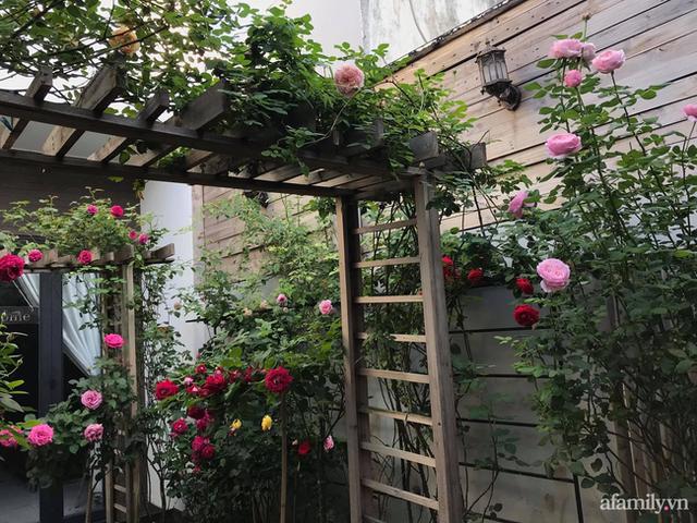 Vườn hồng rực rỡ tỏa sắc hương trước sân nhà đón hè sang của cặp vợ chồng trẻ Sài Gòn - Ảnh 6.