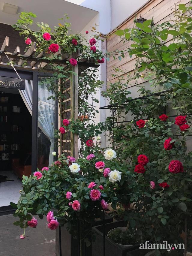 Vườn hồng rực rỡ tỏa sắc hương trước sân nhà đón hè sang của cặp vợ chồng trẻ Sài Gòn - Ảnh 7.