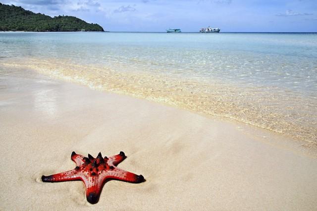 Hòn đảo duy nhất của Việt Nam lọt top nơi sống nghỉ hưu tốt nhất thế giới - Ảnh 3.
