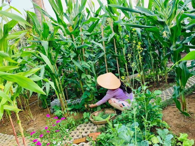 Khu vườn 720m2 đẹp như resort thu nhỏ người chồng tặng vợ ở Đồng Nai - Ảnh 6.