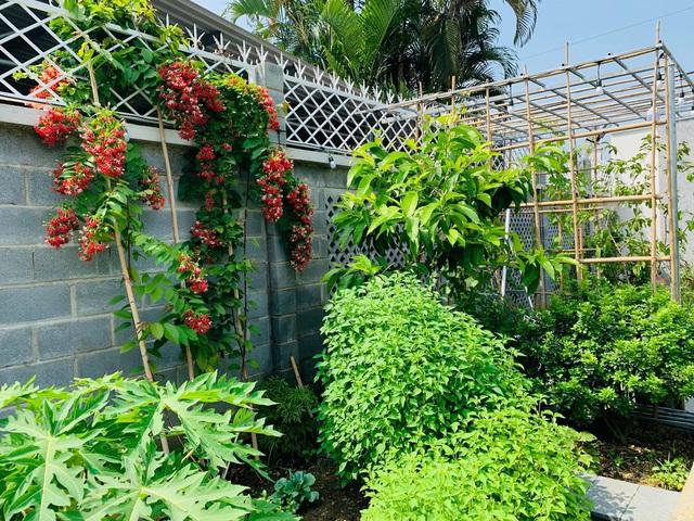Khu vườn 720m2 đẹp như resort thu nhỏ người chồng tặng vợ ở Đồng Nai - Ảnh 7.