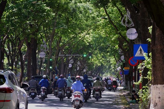 Phố Phan Đình Phùng không chỉ là đẹp lãng mạn mà còn là con đường râm mát nhất Thủ đô - Ảnh 1.