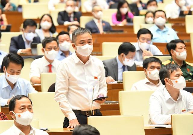 Đại biểu đề nghị Quốc hội ban hành Nghị quyết phòng, chống COVID-19 - Ảnh 4.