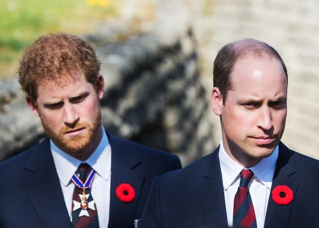 Lời nói lỡ miệng trong quá khứ của Hoàng tử William với em trai Harry: Câu chuyện có liên quan đến Meghan Markle - Ảnh 2.