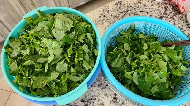 Rau tươi bảo quản theo cách này, để cả năm vẫn như vừa mới hái, mùa đông thèm bát canh rau trái mùa vẫn dễ dàng - Ảnh 4.