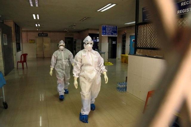 Rùng rợn virus từ dơi gây chết người khiếp hơn Covid-19, tiềm năng thành đại dịch: Không vaccine, không thuốc chữa - Ảnh 1.