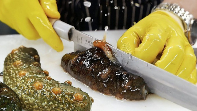Bốn đặc sản Việt xấu hết phần thiên hạ, giá bạc triệu hút khách sành ăn - Ảnh 4.