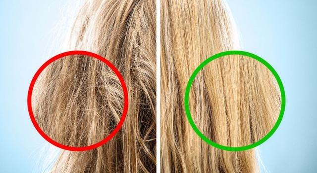 Bỏ ngay thói quen chải tóc từ gốc xuống ngọn đi, đọc lý do bạn sẽ thấy đó là sai lầm tai hại đến nhường nào - Ảnh 2.