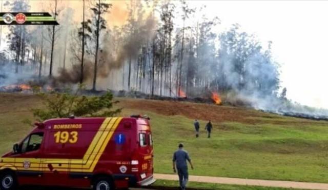 7 người chết thảm trong tai nạn máy bay ở Brazil - Ảnh 2.
