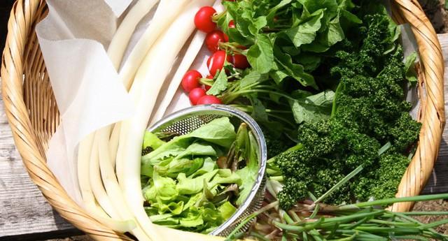 4 loại rau củ nghe tên thì rất quen thuộc nhưng nhà không có điều kiện thì đừng nghĩ đến việc mua ăn hằng ngày - Ảnh 3.