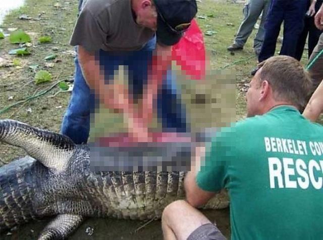 Bắt được cá sấu khủng nặng hơn 2 tạ, cảnh sát mổ bụng phát hiện cảnh ám ảnh - Ảnh 6.