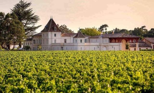 Bốn trang trại của Triệu Vy tại Pháp - Ảnh 8.