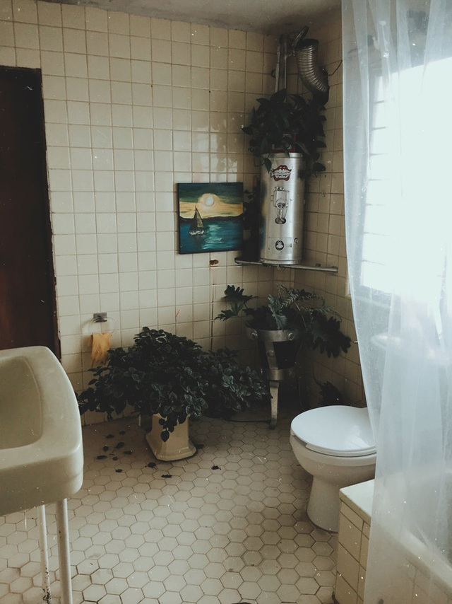 Đặt sai hướng cửa nhà vệ sinh có thể khiến tiền bạc đội nón ra đi? - Ảnh 2.