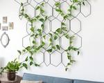 Tạo một góc xanh mướt lãng mạn trong nhà từ cây dây leo