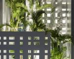 Nhờ thiết kế 300 ô cửa sổ, ngôi nhà hướng Tây ở Nha Trang luôn ngập tràn ánh sáng và gió mát