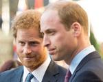 Hoàng tử Harry và Meghan mở tour thăm biệt thự đang ở - Ảnh 1.