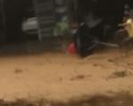 Kinh hoàng người phụ nữ bị cuốn phăng theo dòng lũ dữ ở Nam Trà My và pha cứu người kịp thời của người dân bên đường