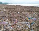 Chùm ảnh: 3.000 tấn rác dạt vào bãi biển Đà Nẵng sau bão số 13