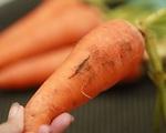 Nhìn cà rốt mà có dấu hiệu này phải lập tức vứt ngay không được tiếc rẻ